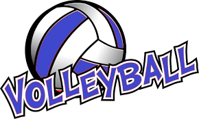 Volleyball Live Stream